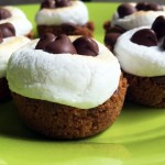 Biscoff Smores Cups