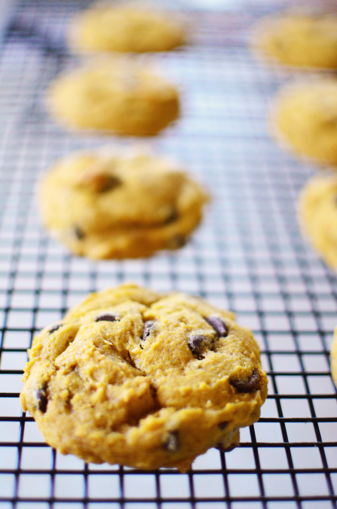 pumpkin-chocolate-chip-cookies-tall